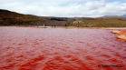 Laguna Roja y sus aguas color sangre.